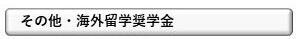 その他奨学金.jpg